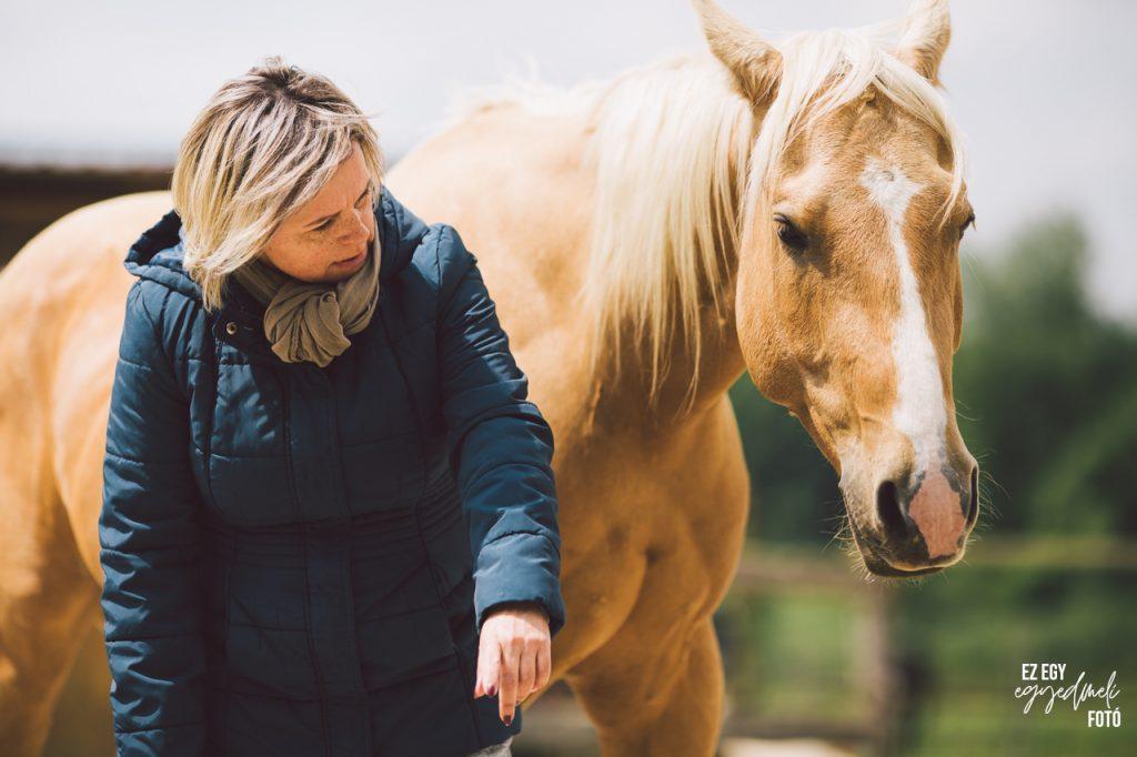 vezető lóval