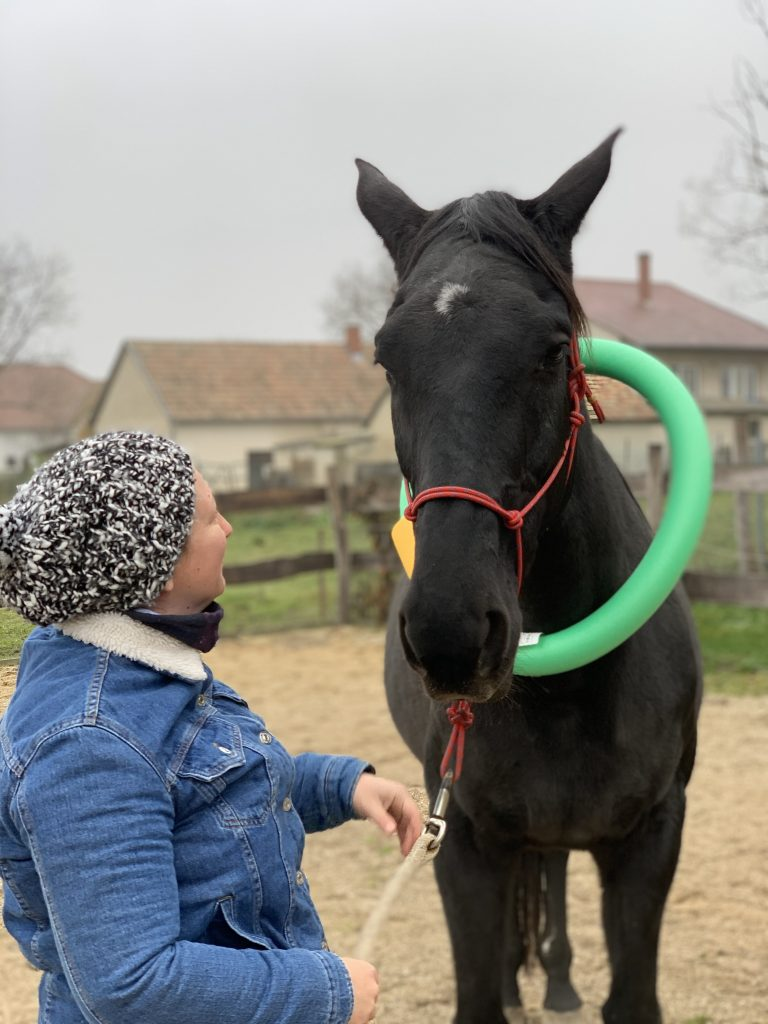 nő lóval