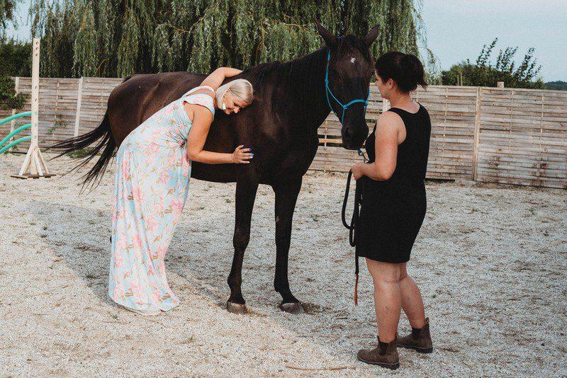 töltődés lovakkal